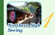 Northern Sigh Seeing