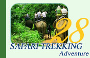 Safari Trekking Adventure