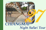 Night Safari Chiang-Mai
