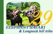 Elephant Safari and Long Neck Hill Tribe