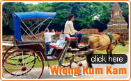 Wiang Kum Kam and Elephant Show and Orchid Farm